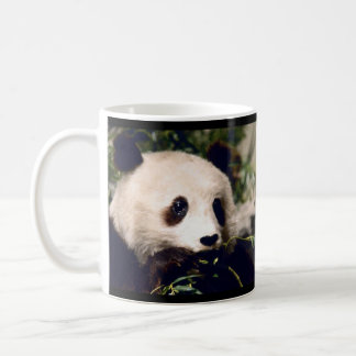Personalized Mug Sweet PANDA MUNCHING ON BAMBOO