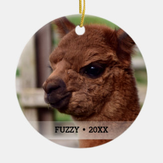 Personalized Pet Alpaca Photo Name Christmas Tree Christmas Ornament