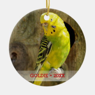 Personalized Pet Bird Photo & Name Christmas Tree Christmas Ornament