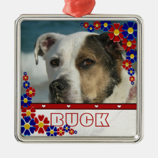 Personalized Pet Dog Photo Frame Daisies Christmas Christmas Ornament