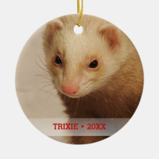 Personalized Pet Ferret Photo Name Christmas Tree Christmas Ornament