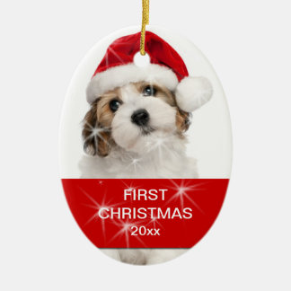 Personalized Pet First Christmas Photo Christmas Ornament
