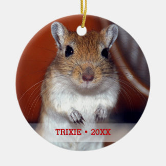 Personalized Pet Gerbil Photo Name Christmas Tree Christmas Ornament