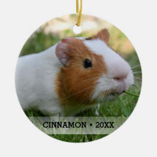 Personalized Pet Guinea Pig Photo Christmas Tree Christmas Ornament