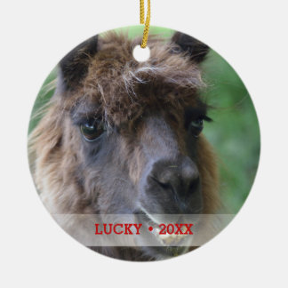 Personalized Pet Llama Photo & Name Christmas Tree Christmas Ornament
