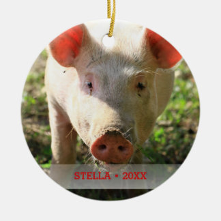 Personalized Pet Pig Photo & Name Christmas Tree Christmas Ornament