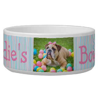 Personalized Photo Dog Bowl Pink and Blue
