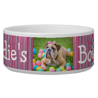 Personalized Photo Dog Bowl Red and Blue