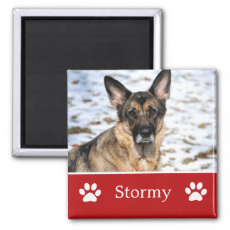 Personalized  Red Pet Photo Magnet