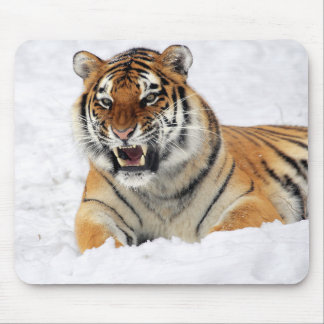 Personalized Tiger Wild Animal Mouse Mat