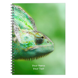 Personalized Wonderful Green Reptile Chameleon Notebooks
