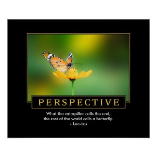 Perspective Inspirational Poster