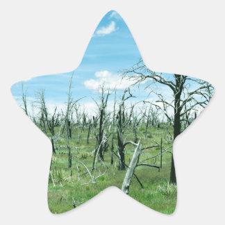 Perspective Star Sticker