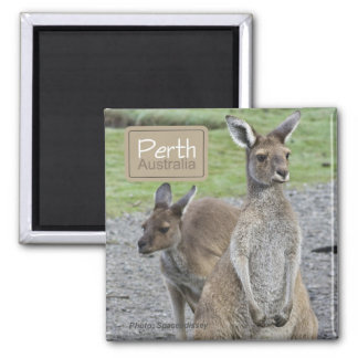 Perth Australia Kangaroo Travel Fridge Magnets