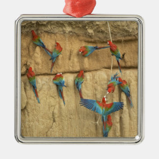 Peru, Amazon River Basin, Madre de Dios Christmas Ornament