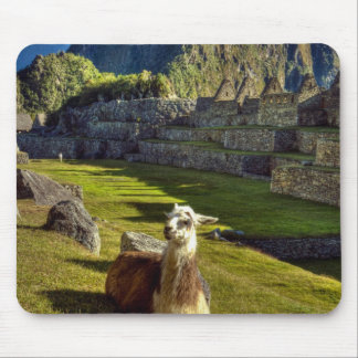 Peru, Andes, Andes Mountains, Machu Picchu, 2 Mouse Mat
