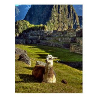 Peru, Andes, Andes Mountains, Machu Picchu, 2 Postcard