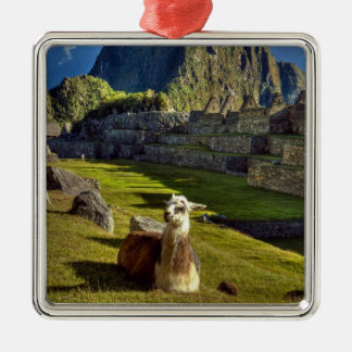 Peru, Andes, Andes Mountains, Machu Picchu, 2 Silver-Colored Square Decoration