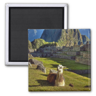 Peru, Andes, Andes Mountains, Machu Picchu, 2 Square Magnet