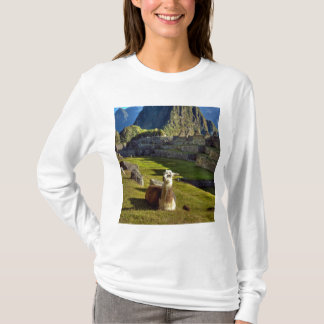 Peru, Andes, Andes Mountains, Machu Picchu, 2 T-Shirt