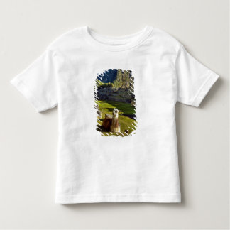 Peru, Andes, Andes Mountains, Machu Picchu, 2 Toddler T-Shirt