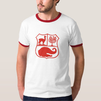 Peruvian T-shirt