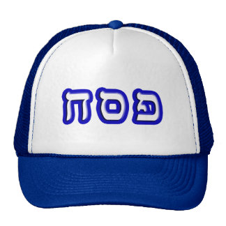 Pesach Mesh Hats