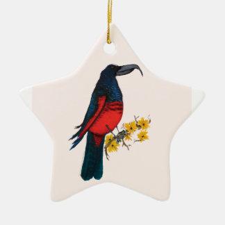 pesquet's parrot, tony fernandes ceramic star decoration