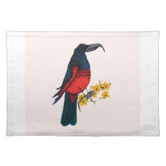 pesquet's parrot, tony fernandes placemat