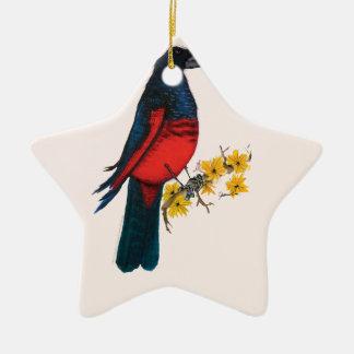 pesquets parrot, tony fernandes christmas ornament