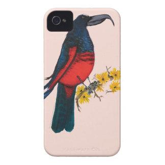 pesquets parrot, tony fernandes iPhone 4 cover