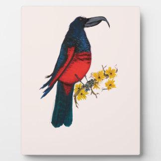pesquets parrot, tony fernandes plaque