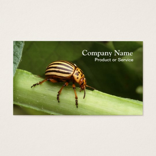 Pest control business card