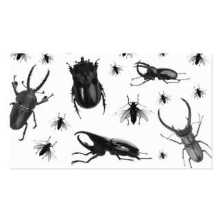 Pest Control Business Card Cockroach Flies