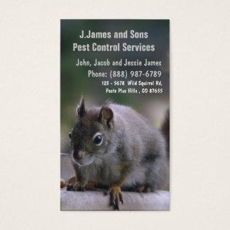 Pest Control Vermin Exterminator
