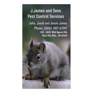 Pest Control Vermin Exterminator Pack Of Standard Business Cards