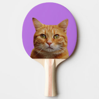 Pet cat animal puppy cute photo ping pong paddle