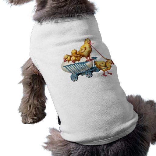 Pet Clothing - easter egg and baby chicks