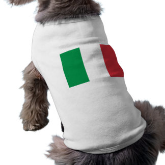 Pet Clothing with Flag of Italy
