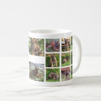 Pet Collage Photo Mug (custom)