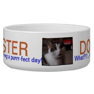 PET DISH.501.MASTER DOG AND CAT PET FOOD BOWLS