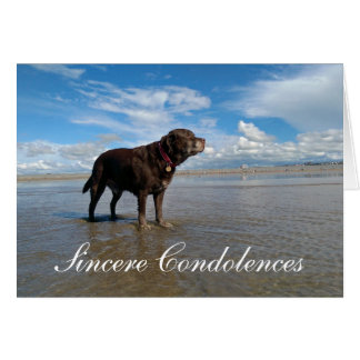 Pet Dog Condolence card