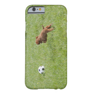 Pet dog running after football in park barely there iPhone 6 case