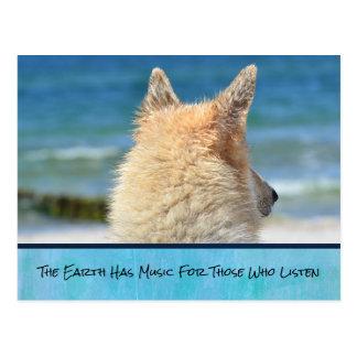 Pet Dog With Inspirational Message Postcard
