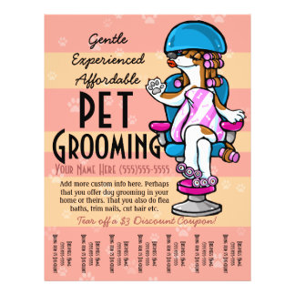 Pet Grooming. Customizable Promotional Tear sheet 21.5 Cm X 28 Cm Flyer