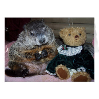 Pet Groundhog Maude with her Teddy Note Card
