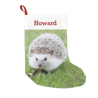 Pet Hedgehog Lover Owner Photo & Name Personalized Small Christmas Stocking