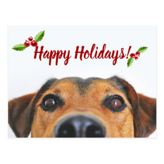 Pet Holiday Photo Postcard