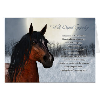 Pet Horse Sympathy Card, Loss Of Pet Horse Card