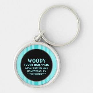 Pet ID Tag - Aqua Blue Vertical Stripes Silver-Colored Round Key Ring
